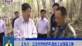 王兆力:立足优势抢抓机遇走工业强县之路