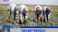 加强土壤保护 保障食品安全