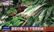 蔬菜价格上涨 下雪惹的祸?