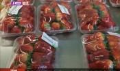 个大草莓上市 市民担心激素