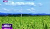 """助力农业升级 哈市出台方案推动""""两区""""建设"""