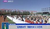"""""""延寿新米节""""购销大米31.58万吨"""