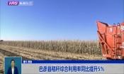 巴彦县秸秆综合利用率同比提升5%