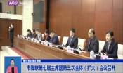 市残联第七届主席团第三次全体(扩大)会议召开