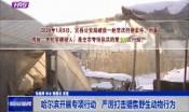 哈尔滨开展专项行动100余次 严厉打击猎售野生动物行为