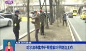 哈尔滨市集中开展榆紫叶甲防治工作