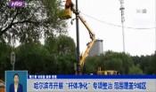 """哈尔滨市开展""""杆体净化""""专项整治 范围覆盖9城区"""