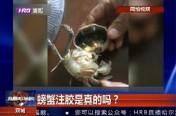 螃蟹注胶是真的吗?