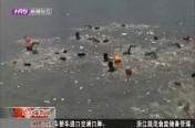 六百余名选手竞技松江