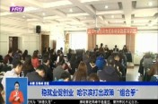 """稳就业促创业  哈尔滨打出政策""""组合拳"""""""