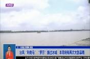 """台风""""利奇马""""""""罗莎""""路过冰城   本周将有两次大到暴雨"""