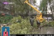 """应对台风""""海神""""  城管系统严阵以待"""