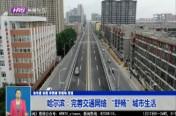 """哈尔滨:完善交通网络 """"舒畅""""城市生活"""