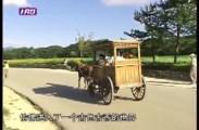 【蓝网专题】睦邻(九十六)庆州的风情