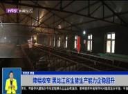 降幅收窄 黑龙江省生猪生产能力企稳回升