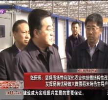 张庆伟:坚持市场导向深化农业供给侧结构性改革 发挥品牌优势做大做强稻米特色主导产业