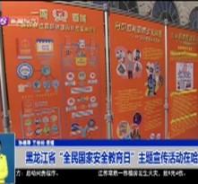 """黑龙江省""""全民国家安全教育日""""主题宣传活动在哈举行"""