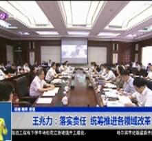 王兆力:落实责任  统筹推进各领域改革