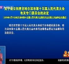 关于设立和更名哈尔滨市第十五届人民代表大会有关专门委员会的决定