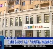 《扫黑除恶在行动》宾县:严问责抓落实  推进建筑行业整改