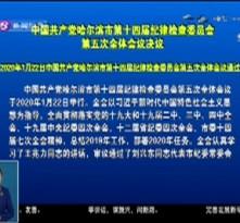 中国共产党哈尔滨市第十四届纪律检查委员会第五次全体会议决议
