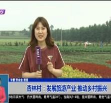 杏林村:发展旅游产业 推动乡村振兴
