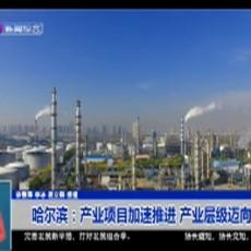 哈尔滨:产业项目加速推进 产业层级迈向高端