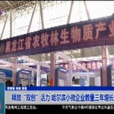 """释放""""双创""""活力 哈尔滨小微企业数量三年增长近一倍"""