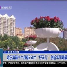 """哈尔滨前十个月有258个""""好天儿"""" 创近年同期最好水平"""