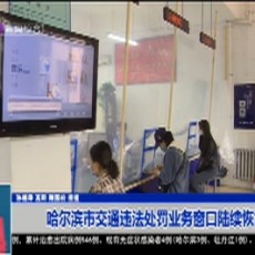 哈尔滨市交通违法处罚业务窗口陆续恢复