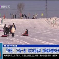 """平房区:""""三馆一园""""助力冰雪运动  全民健身搅热冰天雪地"""