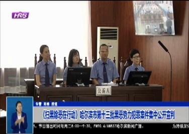 《掃黑除惡在行動》哈爾濱市第十三批黑惡勢力犯罪案件集中公開宣判