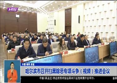 哈尔滨市召开扫黑除恶专项斗争(视频)推进会议