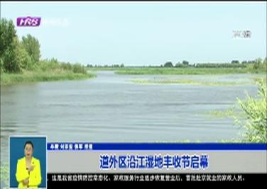 道外区沿江湿地丰收节启幕