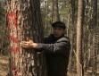 一家4代24口人植树60年:6万亩荒山变林海