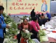 元旦春節農產品市場供應充足 部分農產品價格略有下降