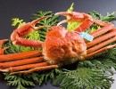 日本北陆石川县美食·特产·住宿等三大旅游排名位列前茅