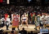 近距离感受日本大相扑比赛:顶尖相扑人气极高 收入丰厚