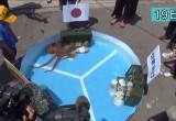日本章鱼成功预测日本队在本届世界杯赛中首战告捷