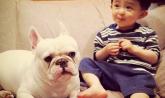 家里养宠物能让宝宝更聪明?