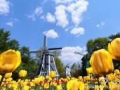 春暖花开季,出游好时节