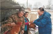 驻村扶贫工作队引导木兰县东兴镇西南村贫困户发展特色养殖