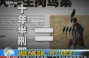 """河南""""掏鸟案""""家属申诉被驳回 曾自首称行贿办案人员"""