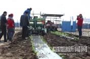 全省蔬菜生产机械化新技术培训为春耕开足马力