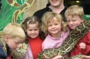 """英夫妇买下动物园 携孩子与狮蛇豹""""同居"""""""