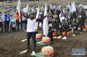 韩国济州岛居民喜迎奥运圣火,海女水下接力成亮点