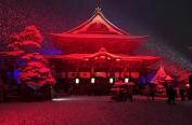 长野明灯节2月7日至12日举行 今年主题为未来与和平
