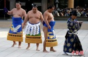 日本禁女性上相扑场 女医护抢救市长遭斥:坏规矩