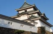 日本黄金周出国高峰为4月28日 最受欢迎的是中国