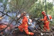 黑龙江呼中国家级自然保护区内蒙古过境林火基本得到有效控制